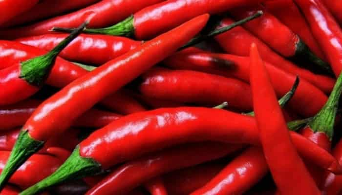 Compounds in Chili Pepper can help you lose weight without harm